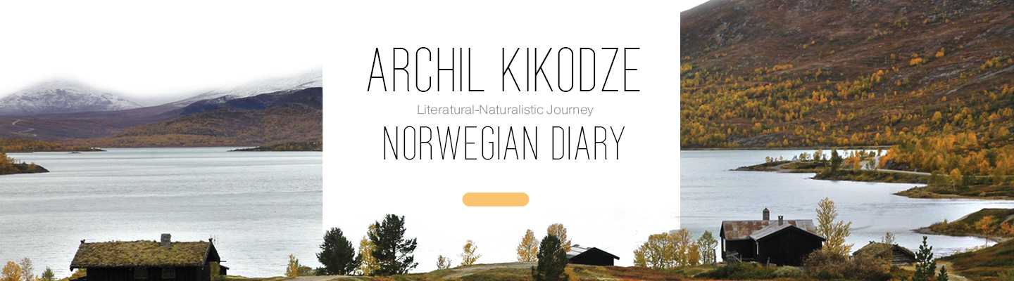 Norwegian-Diary-main